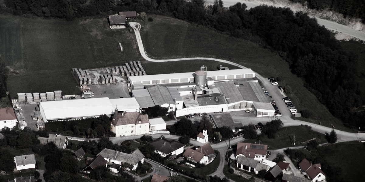 Aerial view of the company BRAUN in Lockenhaus, Austria